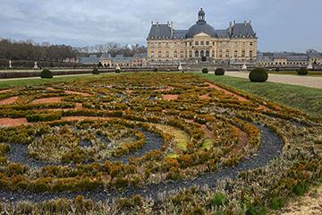 Les buis morts des jardins de Vaux-le-Vicomte