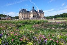 fleurs - jardin et château de Vaux-le-Vicomte
